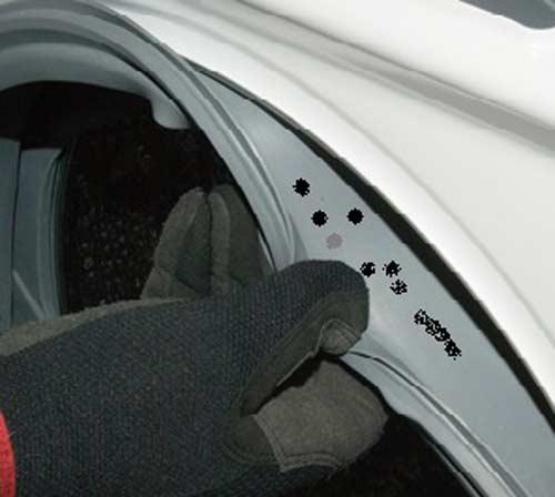 gioăng máy giặt Electrolux bị mốc đen